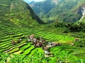Banaue-rice-terraces_large